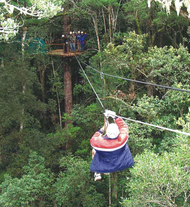 Ziplining with Canopy Tours.